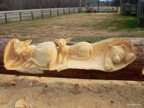 hyperrealistic sculptures of wildlife