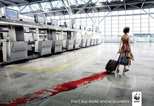 Social advertising of the World Wildlife Fund