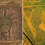Representational crop art by Stan Herd