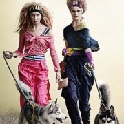 with husky dogs