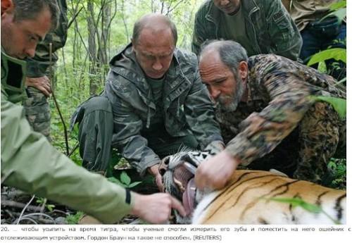 Animal lover Putin