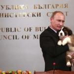 Sen Bernard at the hands of Putin