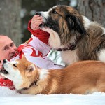 Winter walk with favorite dogs, Animal lover Putin