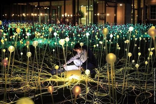 Bruce Munro's Light Installation