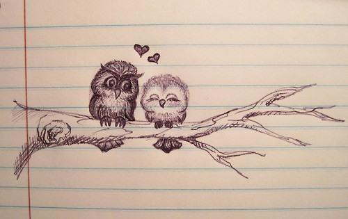 Love Owls. Owl We Need Is Love