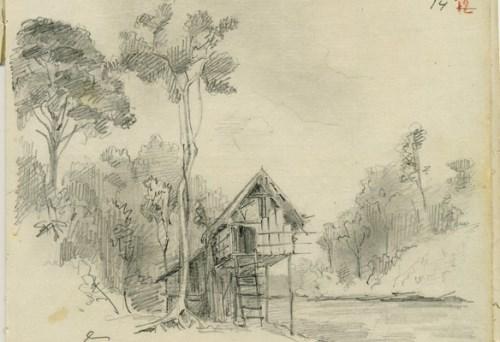 Maclay's drawing