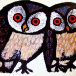 Owl facts you probably didn't know