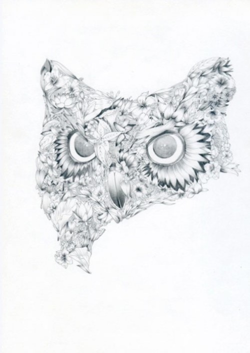 Owl drawing by Philippe Constantinesco