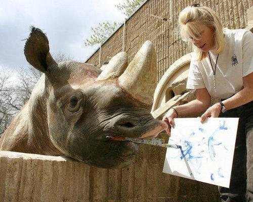 animal artists. Rhino Mishindi, painting