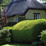 Beautiful Thatched Houses England