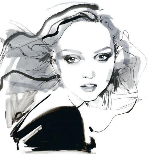 Fashion illustrations David Downton