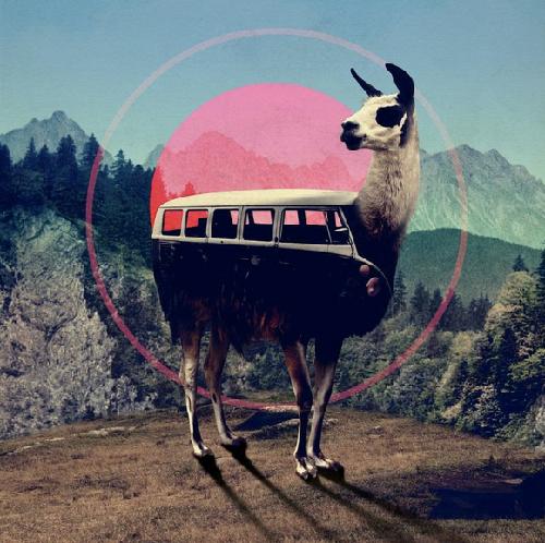 llama-campervan. Artwork by Turkish artist and graphic designer Ali Gulec