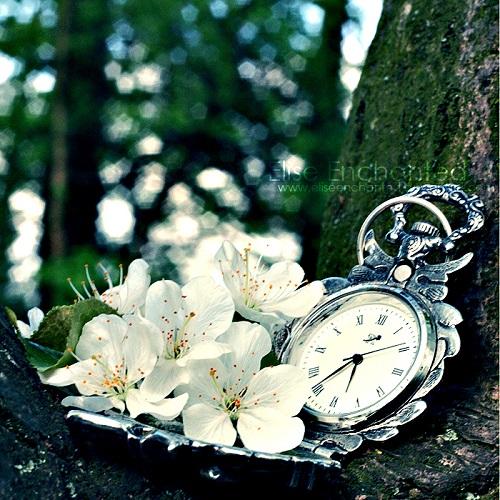 Beautiful photoart by Belgian photographer Elise Bergsma (EliseEnchanted)