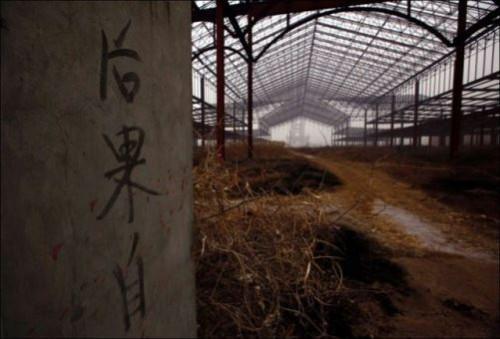 Abandoned China's Magic Kingdom 'Wonderland'