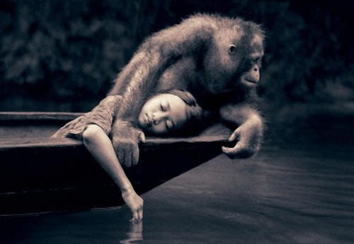 Interactions between human beings and animals by Canadian photographer Gregory Colbert