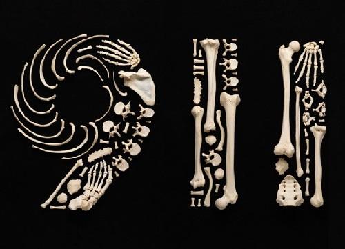 Stop Violence. Art Made From Human Bones. Photographer Francois Robert, Switzerland