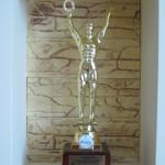 Award Mister Russia 2013