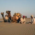 Rest in desert