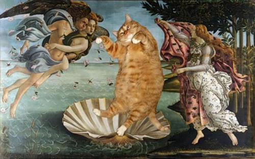 Fat cat Zarathustra in 'The Birth of Venus', painting by Sandro Botticelli