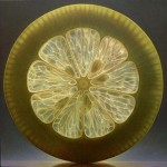 Citrus Hyper-realistic painting by American artist Dennis Wojtkiewicz