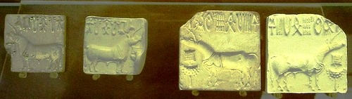 Indus valley seals showing 'unicorns' (British Museum)