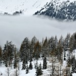 Mist, photographer Gilles Ferrier