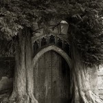 Magic door. Portraits of the time. Photography by Beth Moon