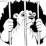 Drawing - imprisoned