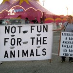 Not fun for the animals