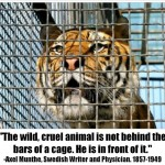 The wild, cruel animal is not in cage, he is in front of it