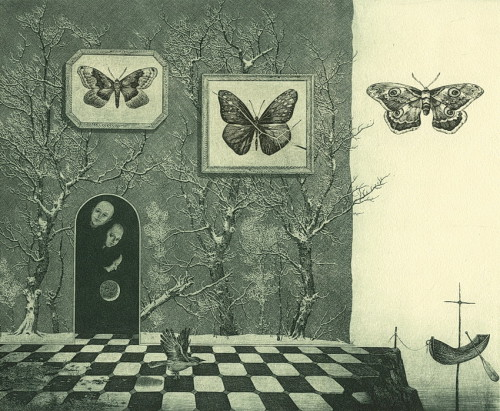 Museum of butterflies. Etching, mezzo tinto, drypoint