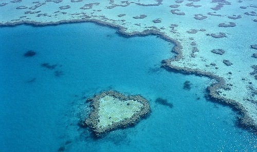 This aerial image shows a reed at Hardy Reef, near Whitsunday Islands on the north eastern coast of Australia