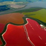 Beautiful salt evaporation ponds in San Francisco Bay