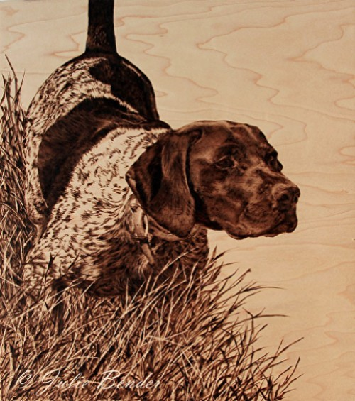 Above the Rest (German Short-haired Pointer). Pyrography on Maple wood