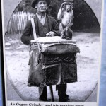 An organ grinder with a monkey