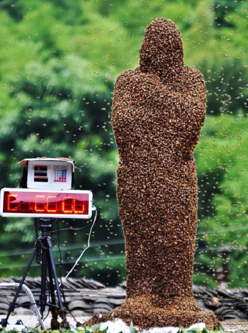 Beekeeper Wang Dalin, 42, stands with bees covering his body on a weighing scale during a 'bee-bearding' competition