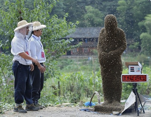 Beekeeper Wang Dalin was crowned the winner after attracting 26.86kg of bees onto his body in 60 minutes, according to local newspaper reports