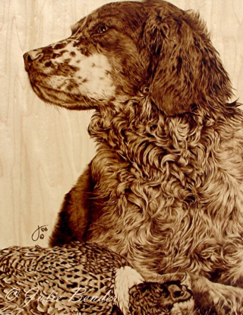 Contented (Brittany spaniel with rooster pheasant). Pyrography on Maple wood