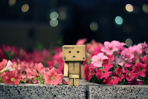 Cardboard man Danbo, photo by Anton Tang, Singapore