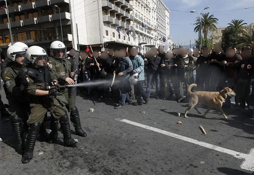 The Riot Dog Loukanikos - Person of the Year 2011