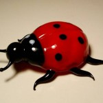 Lady-bug. Glass insect sculptures by American artist Wesley Fleming