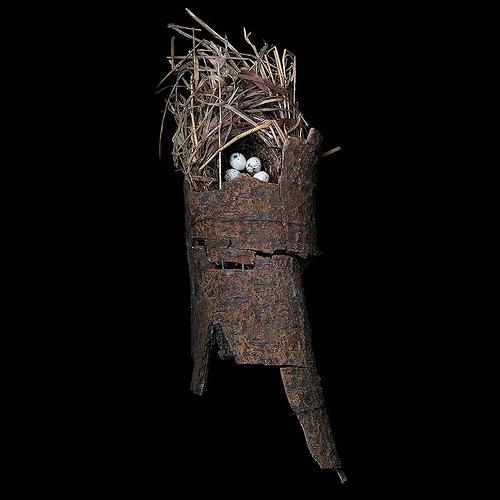 Green Broadbill's Nest