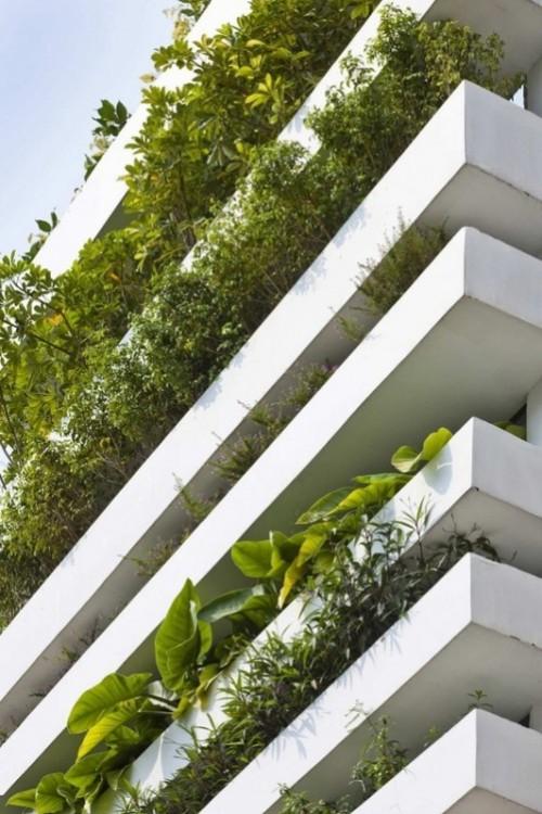 The energy saving Green House in Vietnam