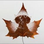 Leaf carving