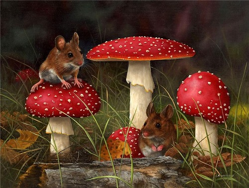 Mouse On Toadstool. Painting by English Wildlife artist Carl Whitfield