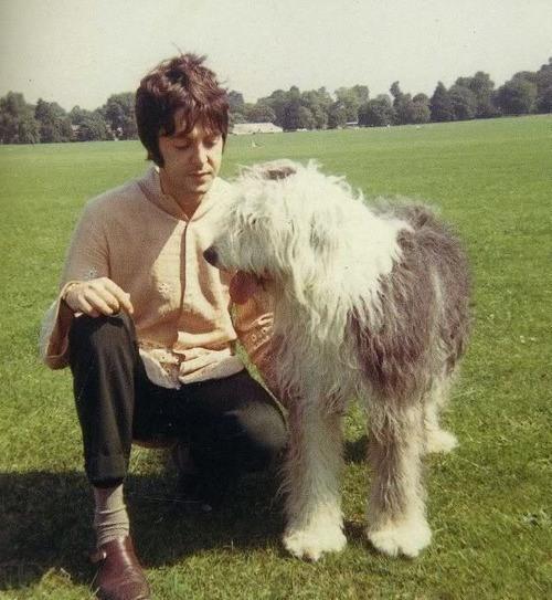 Paul McCartney, and Martha