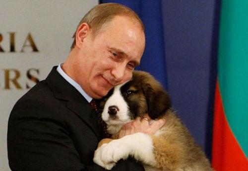 Putin and his dog, photo inspiration for artist Alexei Sergiyenko