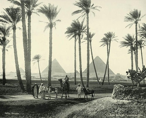 The road to the pyramids of Giza. Egypt in retro photographs of 1870