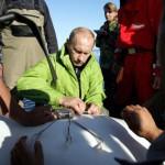 Saving animals Vladimir Putin