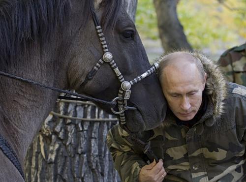 Vladimir Putin with a horse